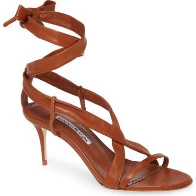 Manolo Blahnik Tor Ankle Wrap Sandal, Brown