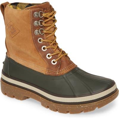 Sperry Ice Bay Waterproof Snow Boot- Brown