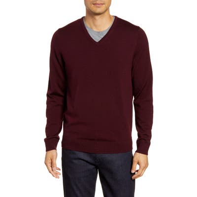 Nordstrom Shop V-Neck Merino Wool Sweater