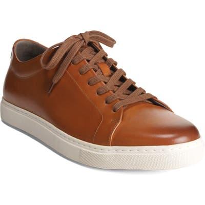 Allen Edmonds Canal Court Sneaker - Brown
