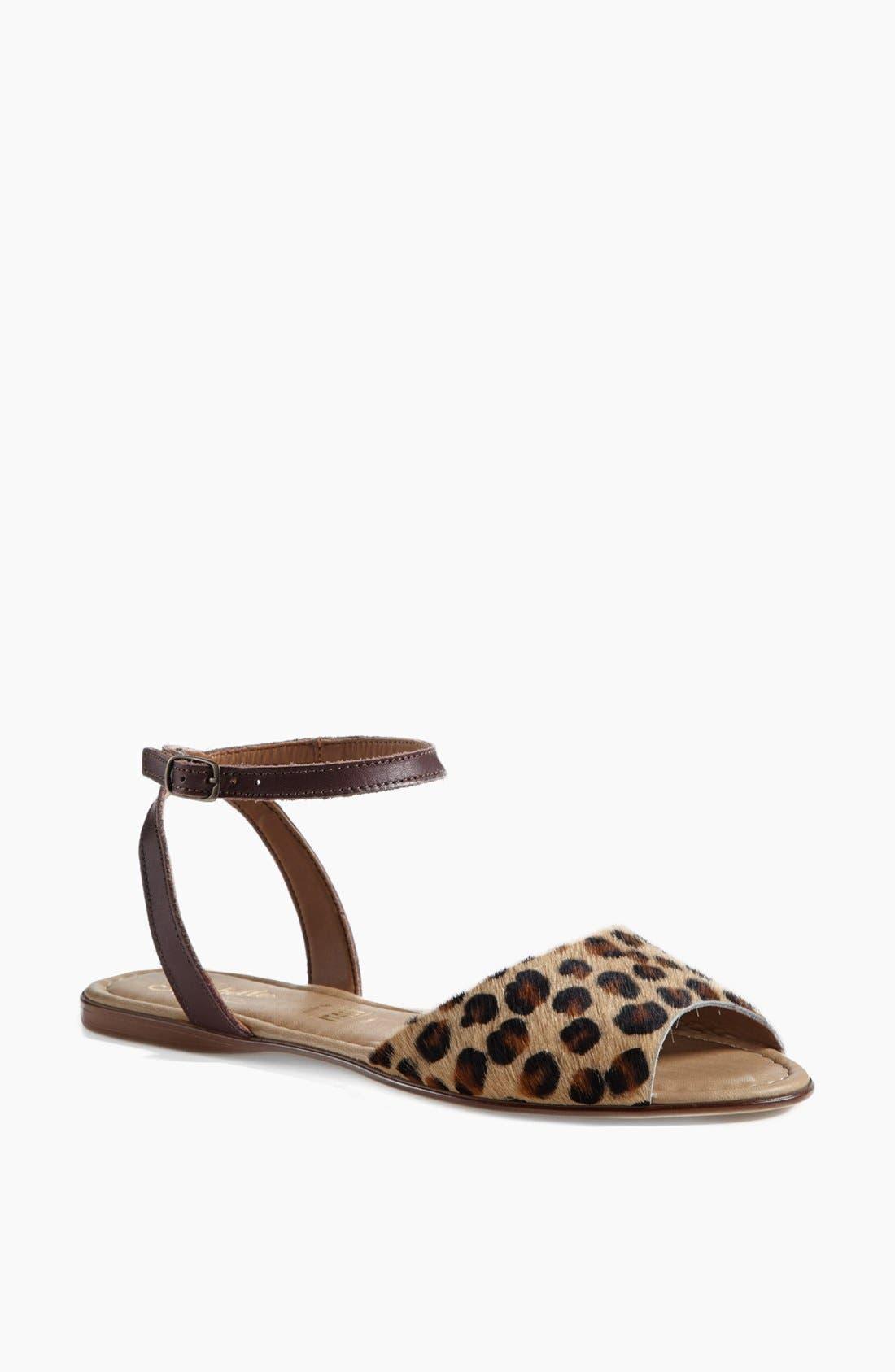 ,                             'Brand New' Ankle Strap Calf Hair Sandal,                             Main thumbnail 13, color,                             240