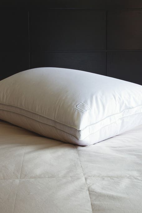 Allied Home - Nikki Chu Queen Cotton White Goose Down Best Pillow with Removable Cover