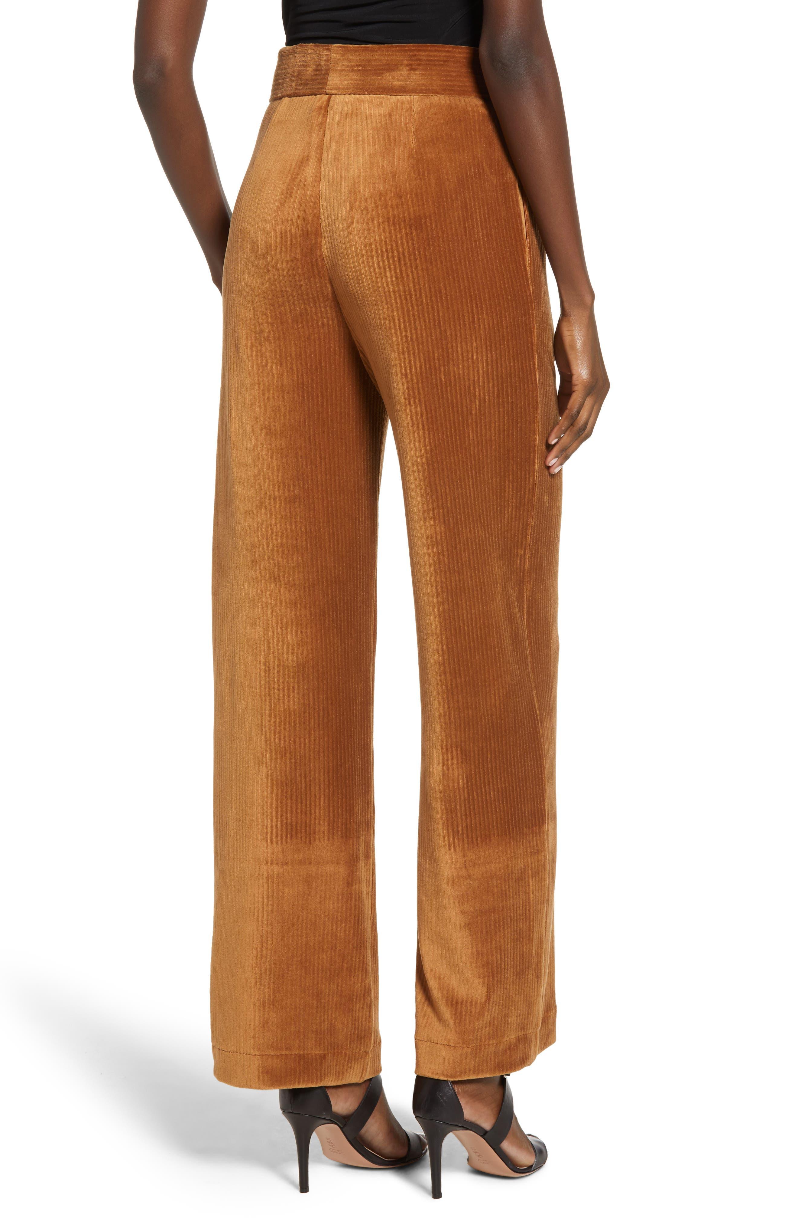 ,                             Velour Tie Waist Pants,                             Alternate thumbnail 2, color,                             200