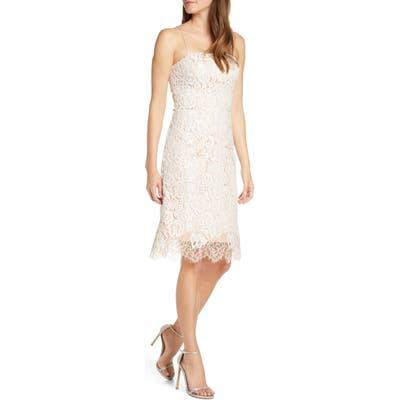 Eliza J Lace Cocktail Dress, Ivory