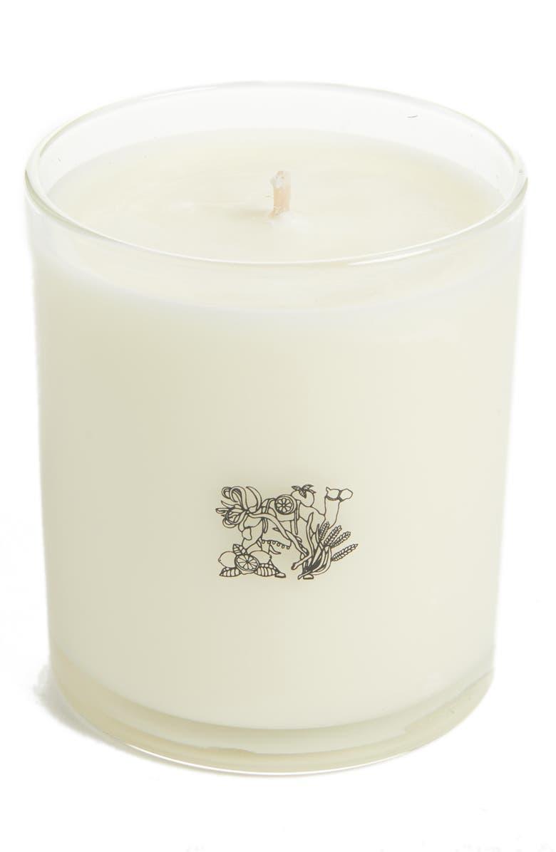APOTHEKE Fragrance Scented Candle, Main, color, OAKMOSS/ AMBER
