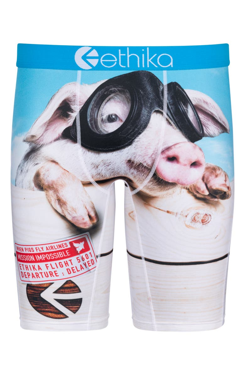 ETHIKA Flynn Piggy Boxer Briefs, Main, color, ASSORTED