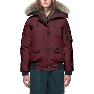 Canada Goose Chilliwack Hooded Down Bomber Jacket With Genuine Coyote Fur Trim, Purple