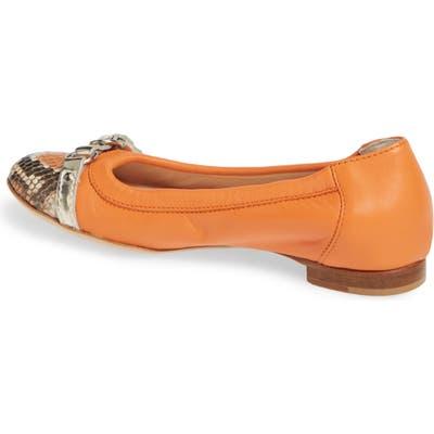Agl Cap Toe Ballet FlatUS / 43.5EU - Orange