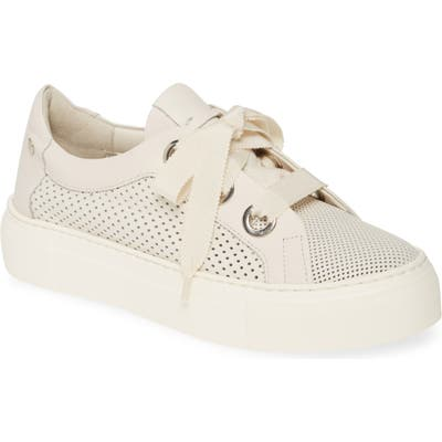 Agl Perforated Platform Sneaker - White
