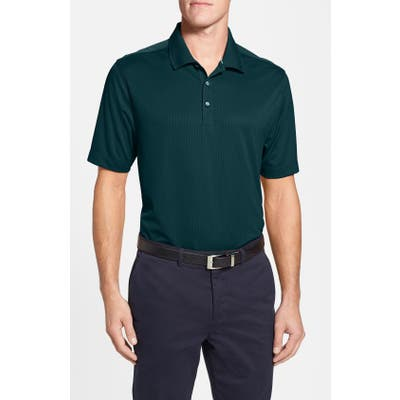 Big & Tall Cutter & Buck Glendale Drytec Moisture Wicking Polo - Green