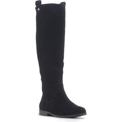 Sole Society Bramie Knee High Boot