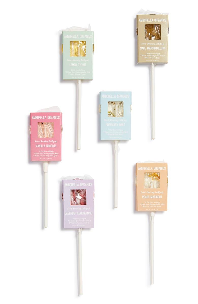 AMBORELLA ORGANICS Beginning Garden Essentials 12-Piece Seed Based Lollipop Set, Main, color, WHITE MULTI