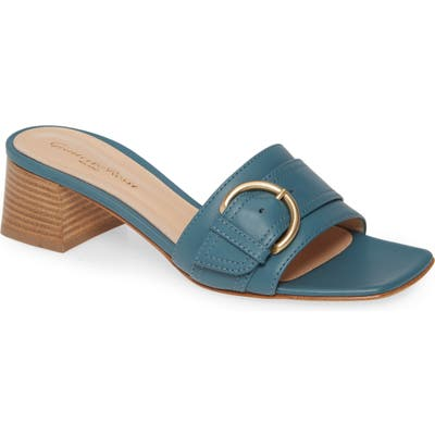 Gianvito Rossi Buckle Slide Sandal, Blue