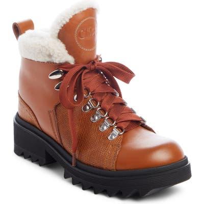 Chloe Bella Genuine Shearling Lined Hiking Boot, Brown