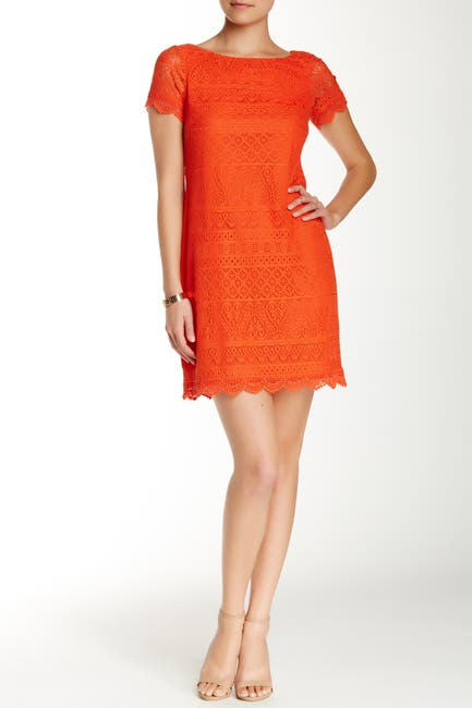 Image of Maggy London Short Sleeve Lace Shift Dress