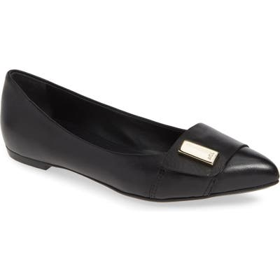Agl Pointy Toe Flat - Black