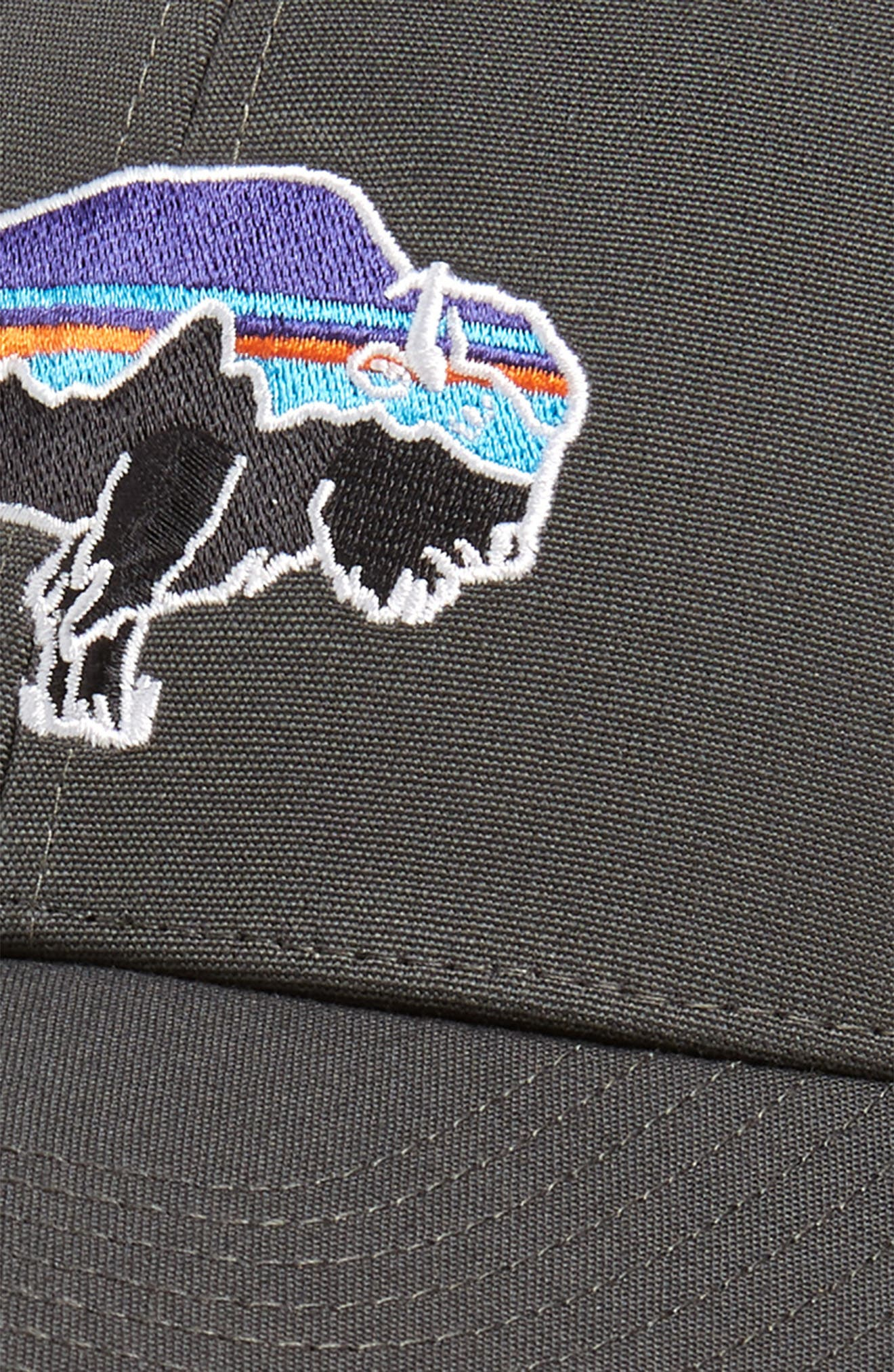 ,                             Fitz Roy Bison Trucker Hat,                             Alternate thumbnail 3, color,                             021