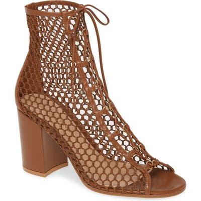 Gianvito Rossi Mesh Lace-Up Bootie, Brown