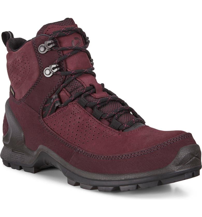 ECCO Biom Terrain Gore-Tex<sup>®</sup> Waterproof Hiking Boot, Main, color, 930