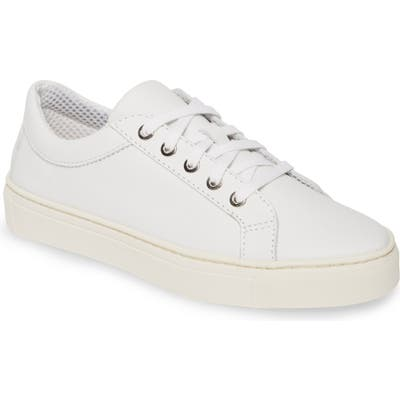 The Flexx Sneak Away Sneaker- White