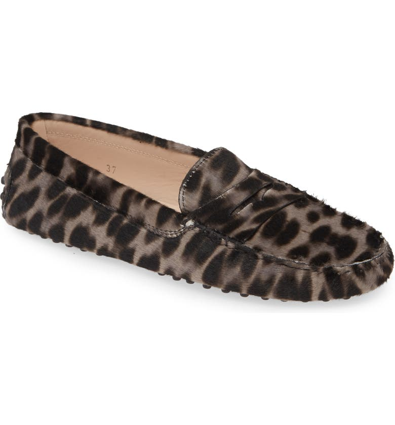 TOD'S Gommini Leopard Print Genuine Calf Hair Driving Moccasin, Main, color, LEOPARD GREY