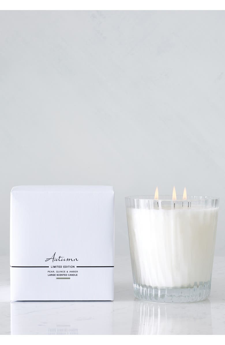 THE WHITE COMPANY Large Autumn Candle, Main, color, AUTUMN