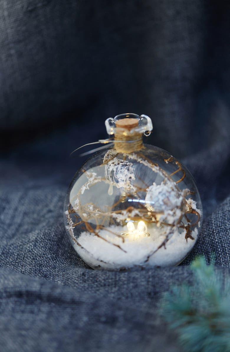 TERRAIN Nature LED Glass Ball Ornament, Main, color, BROWN