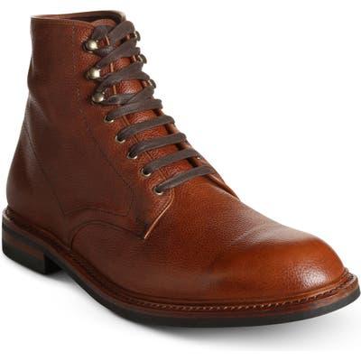 Allen Edmonds Higgins Weatherproof Plain Toe Boot, Brown