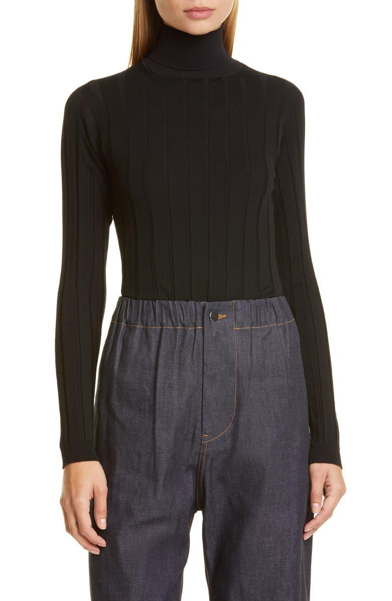 SOFIE D'HOORE Ribbed Turtleneck Sweater, Main, color, BLACK