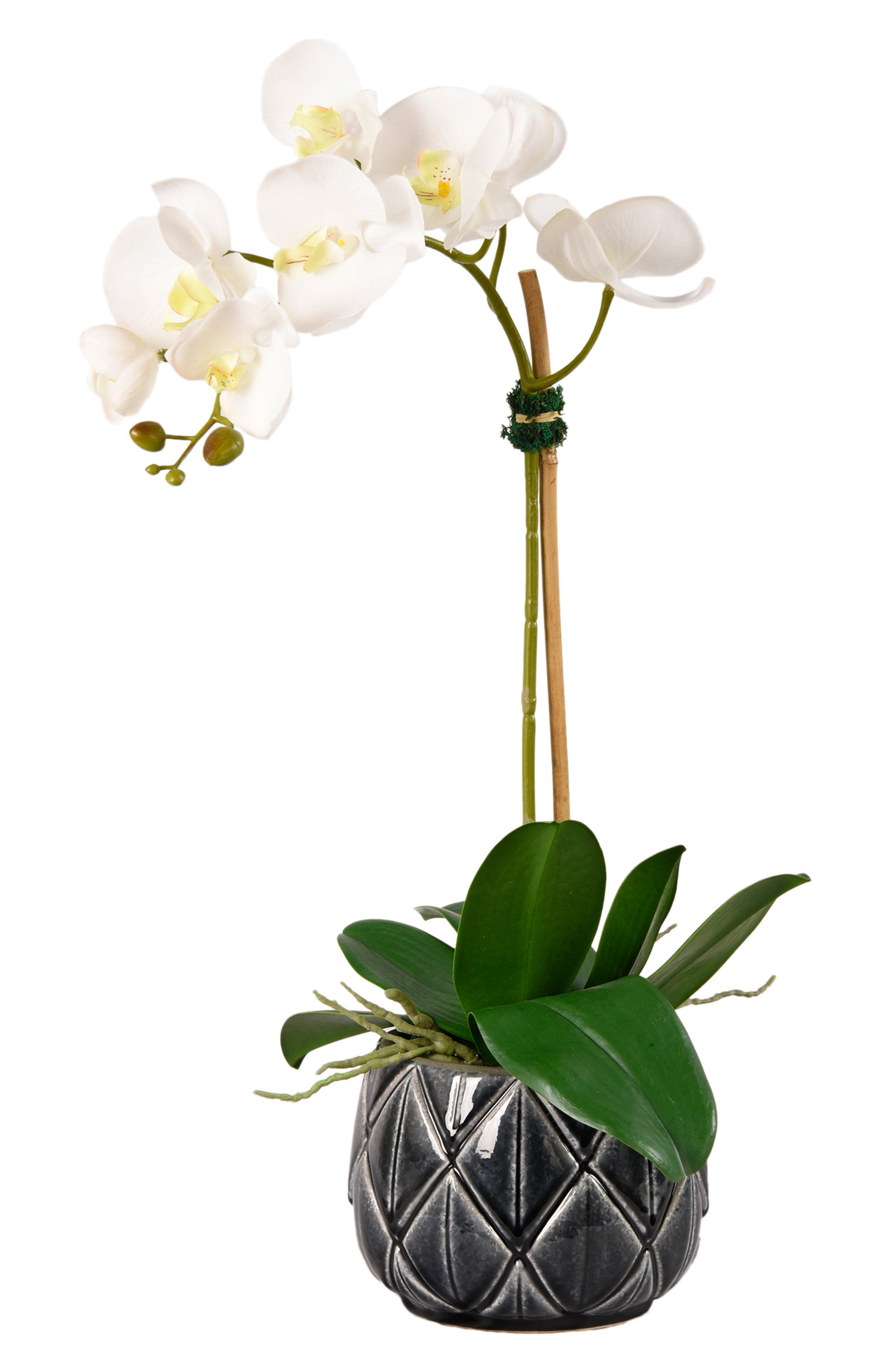 No need for a green thumb when you\\\'ve got this lovely florist-designed faux orchid arcing gracefully above a glossy ceramic pot. The design serves as a perfect complement to any decor. Style Name: Bloomr Stella Orchid Planter Decoration. Style Number: 5889122. Available in stores.