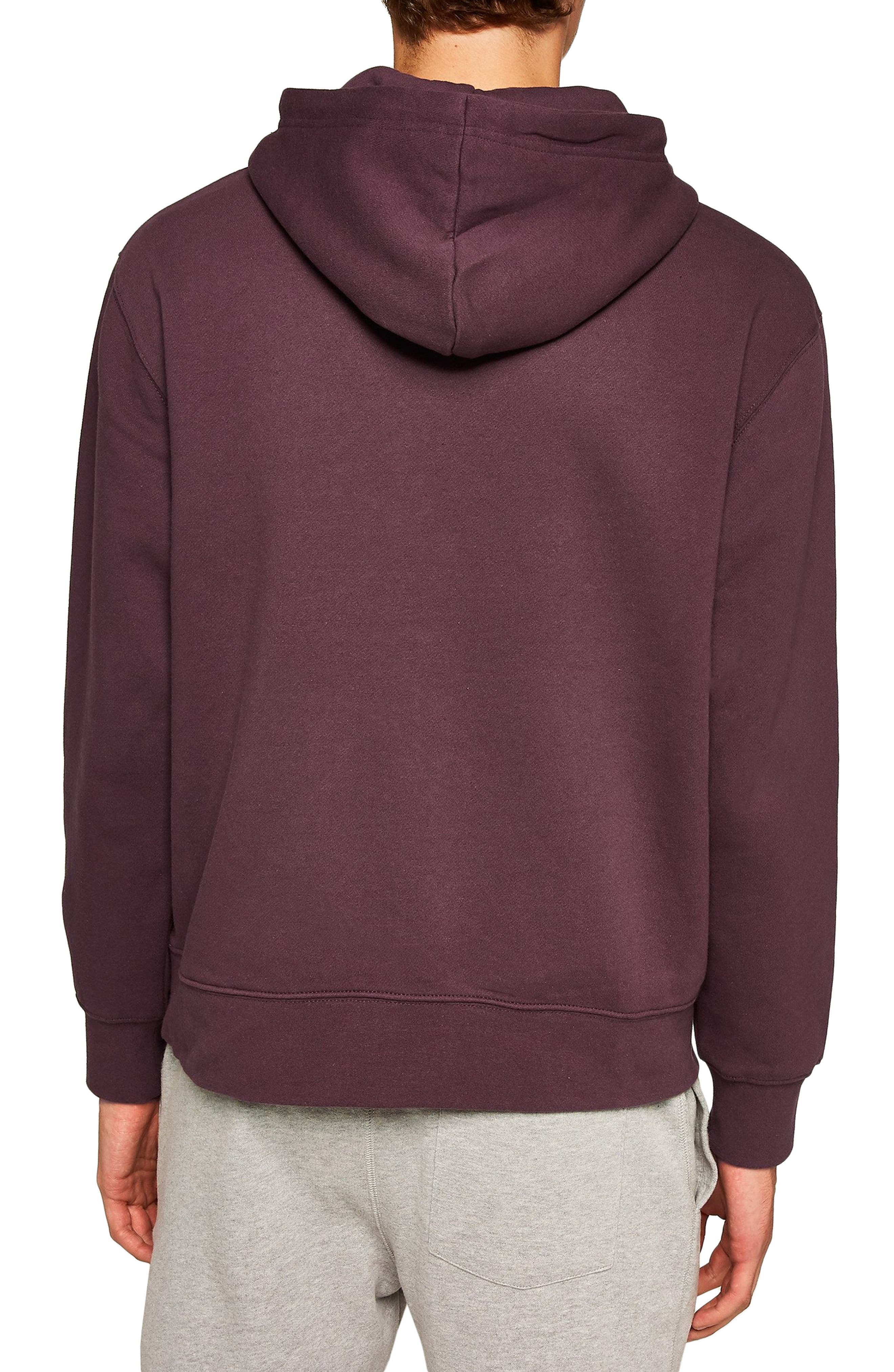 ,                             Hoodie,                             Alternate thumbnail 60, color,                             600