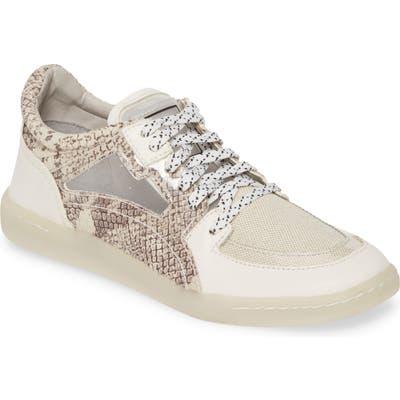 Dolce Vita Nea Sneaker- Brown