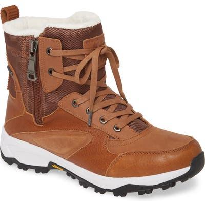 Pajar Toretto Waterproof Hiking Boot, Brown
