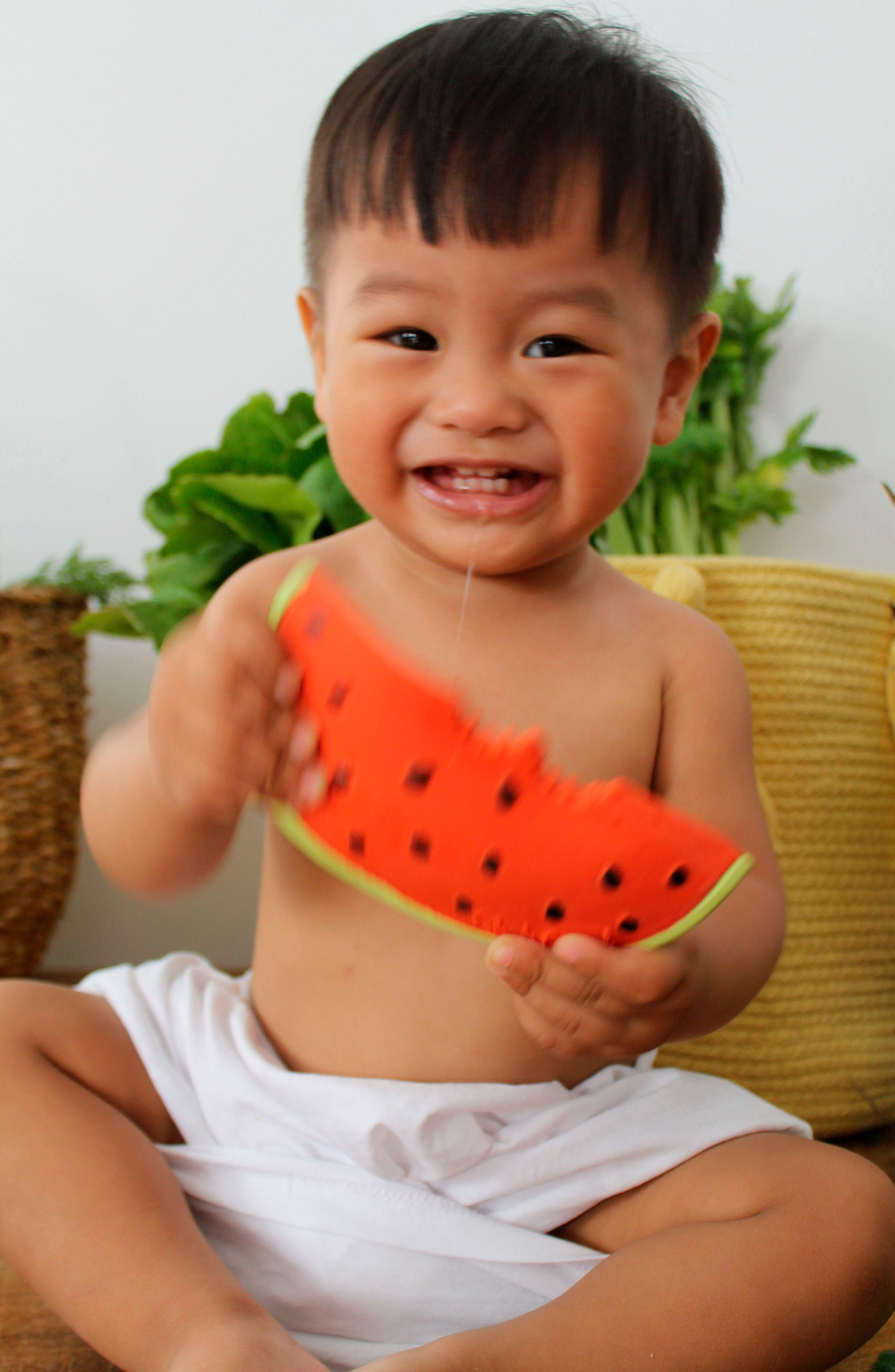 ,                             Oli and Carol Wally the Watermelon Teething Toy,                             Alternate thumbnail 6, color,                             600