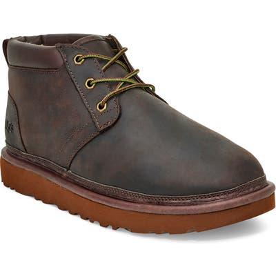 UGG Neumel Utility Chukka Boot, Brown