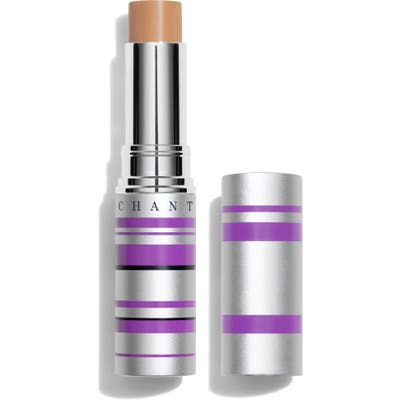 Chantecaille Real Skin+ Eye & Face Stick - 5