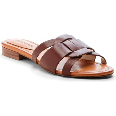 Enzo Angiolini Golda Slide Sandal, Brown