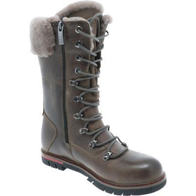 Royal Canadian Sherbrooke Genuine Shearling Cuff Waterproof Boot, Grey
