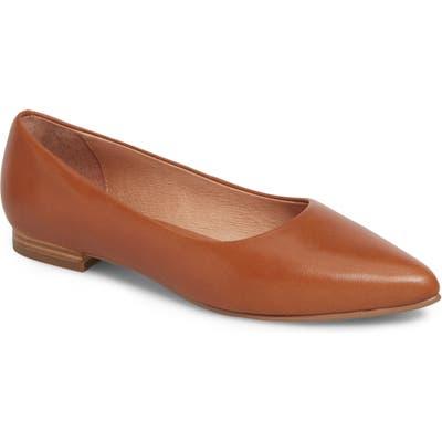 Caslon Luna Pointy Toe Flat- Brown