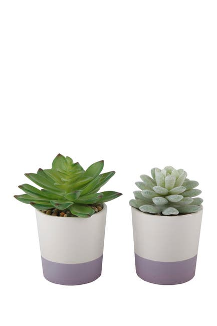 Image of FLORA BUNDA Faux Succulent in Ceramic Colorblock Planter - Set of 2