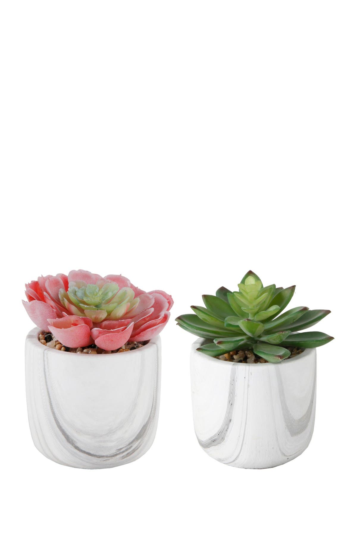 Image of FLORA BUNDA Small Succulent in Marble Planter- Set of 2