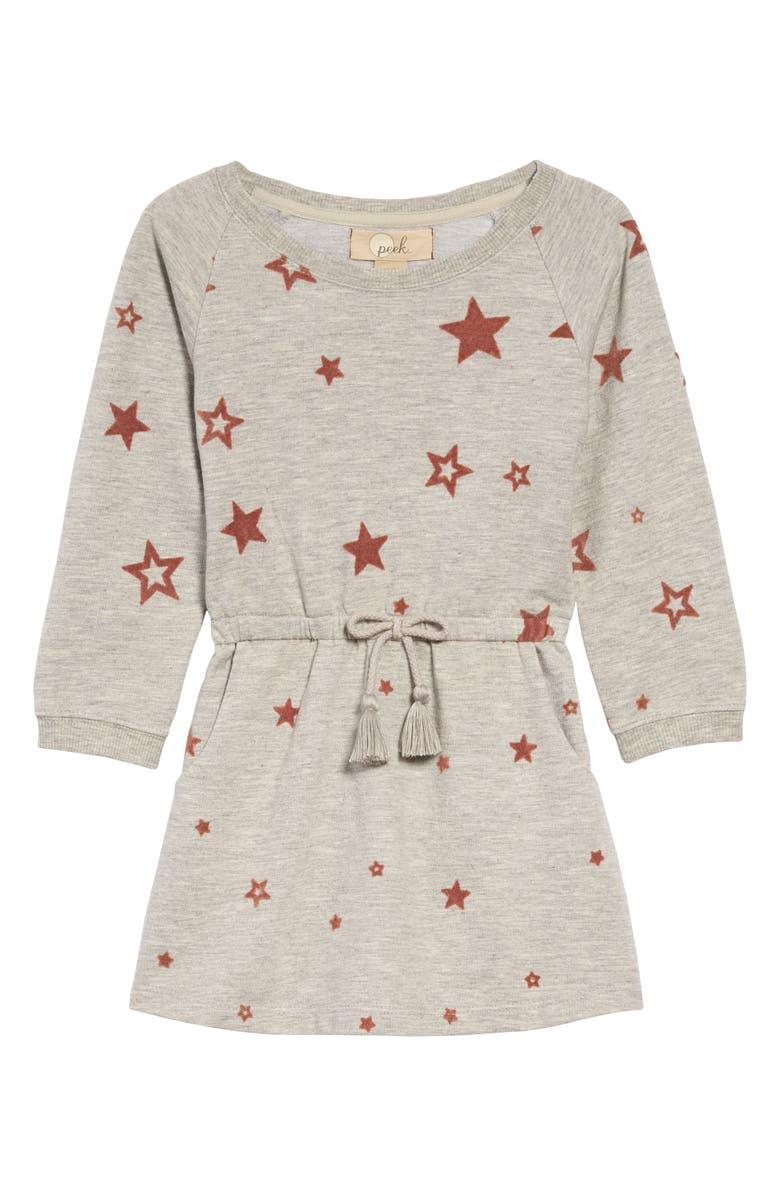 PEEK AREN'T YOU CURIOUS Bryn Star Print Dress, Main, color, GREY HEATHER