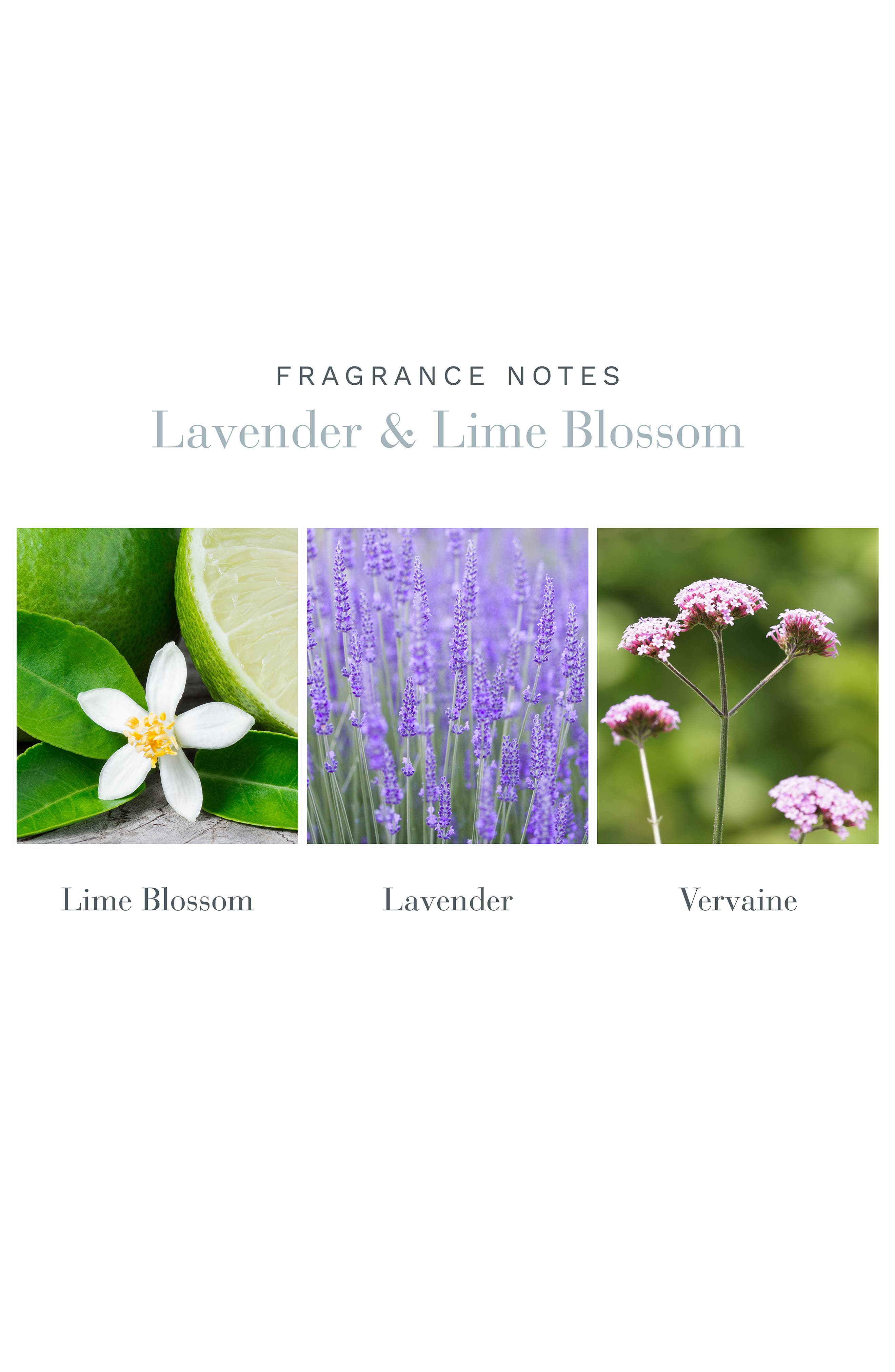 ,                             Lavender & Lime Blossom Home Ambiance Perfume,                             Alternate thumbnail 2, color,                             NO COLOR