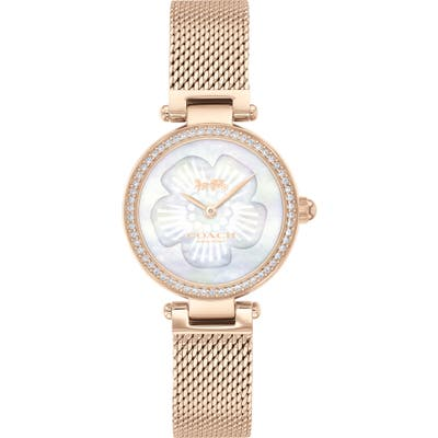 Coach Park Mesh Strap Watch, 2m