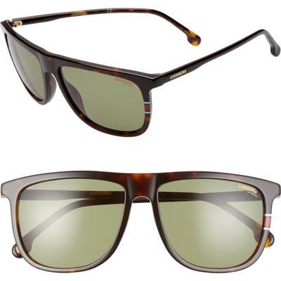 Carrera Eyewear 5m Navigator Sunglasses - Havana Green/ Green