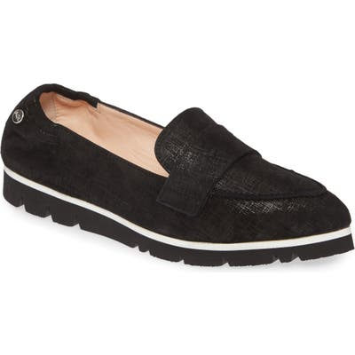 Agl Micro Pointed Toe Loafer, Black
