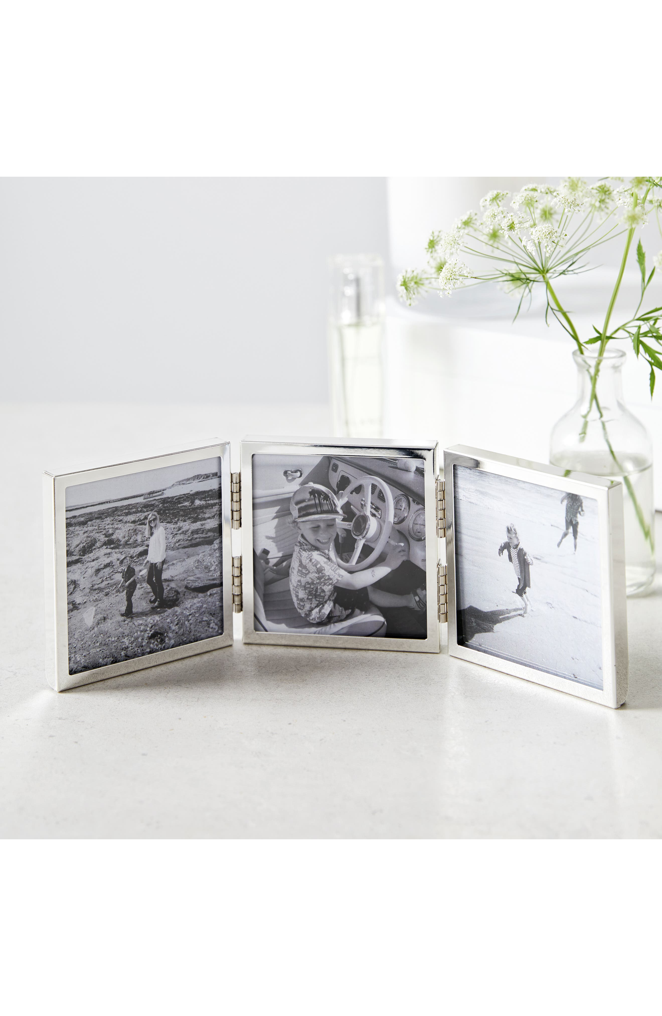 Fine Mini Hinged Three-Aperture Picture Frame, Main, color, 040