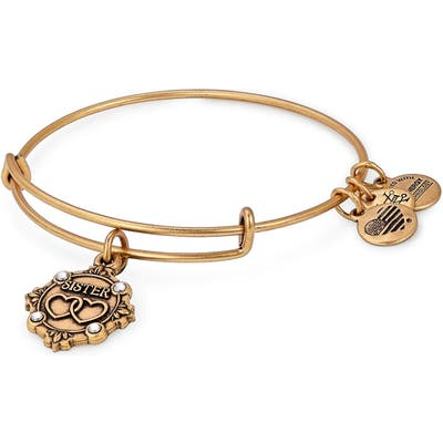 Alex And Ani Because I Love You Sister Charm Bangle