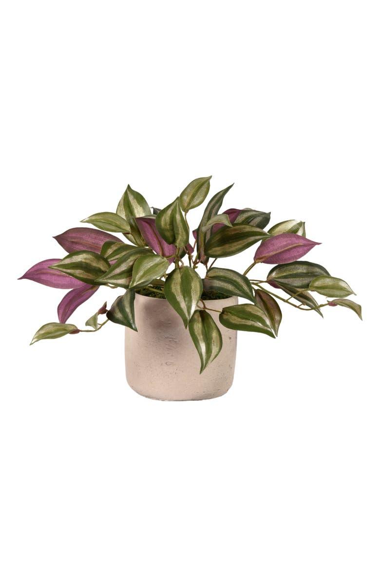 BLOOMR Vanilla Planifolia Planter Decoration, Main, color, IVORY