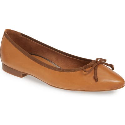 Paul Green Andre Pointy Toe Ballet Flat - Brown